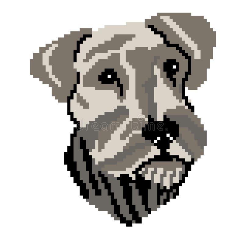 Framsidan för konturn för hundavelschnauzeren tystar ned, målade fyrkanter, PIXEL KonturavelSchnauzer också vektor för coreldrawi royaltyfri illustrationer