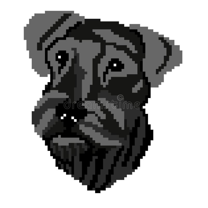 Framsidan för konturn för schnauzeren för hundavelsvart tystar ned målade fyrkanter, PIXEL Kontur av den svarta Schnauzeraveln royaltyfri illustrationer