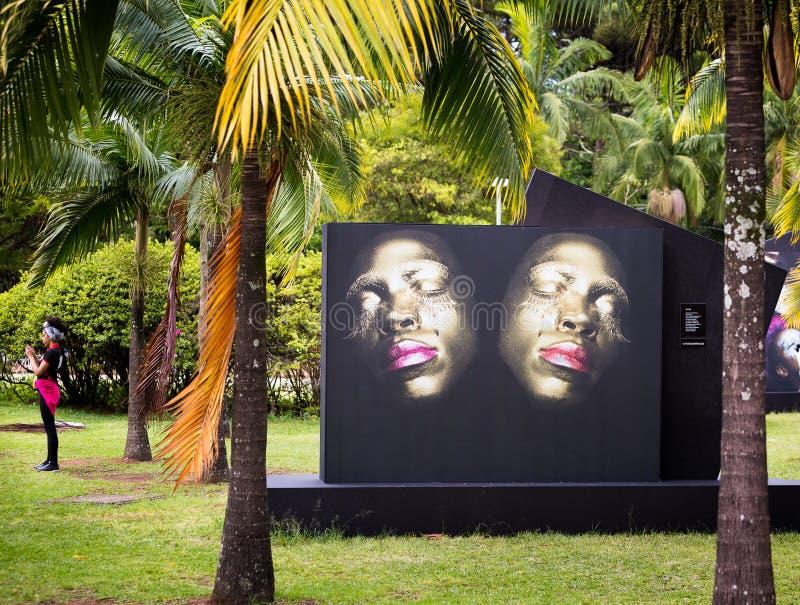 Framsidor av en reflex, Sao Paulo royaltyfri fotografi