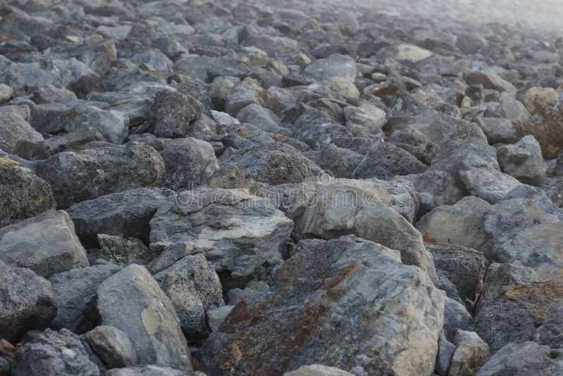 Framtidsutsikt av talrika styva stenar fotografering för bildbyråer