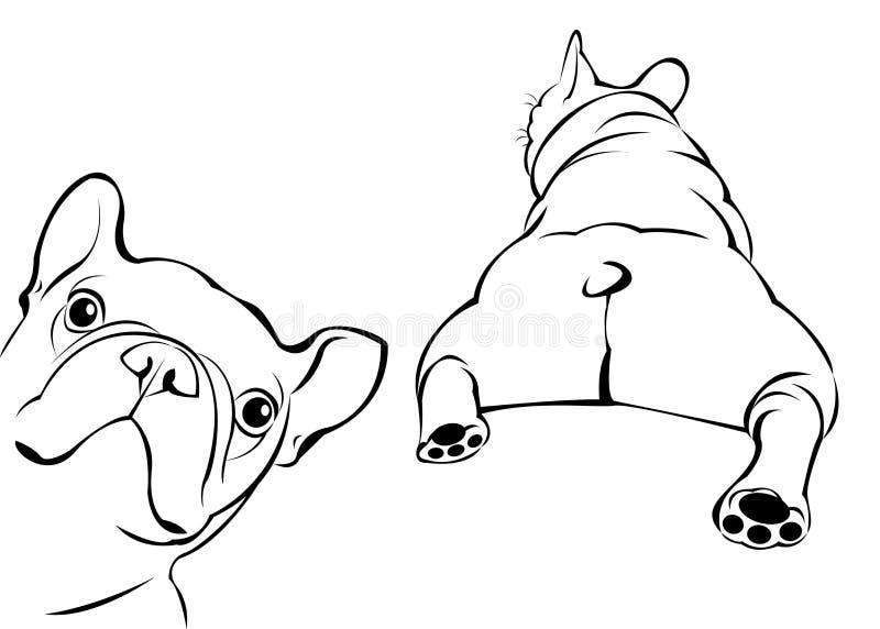 Français mignon de bouledogue d'animal de compagnie de race de chien image stock