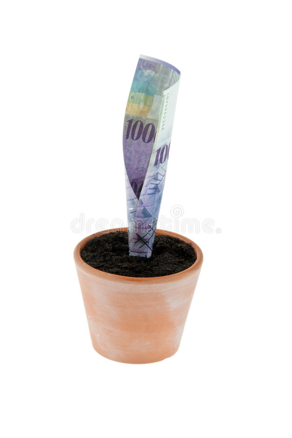 Franc Bill In Flower Pot. Interest Rates, Growth Stock Images