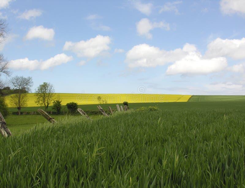 Download France landscape stock photo. Image of northampton, rural - 119010