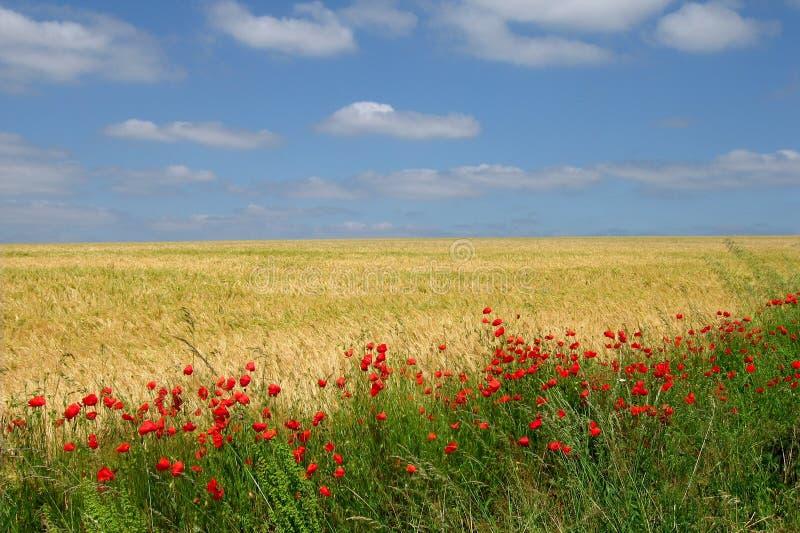 France landscape stock images