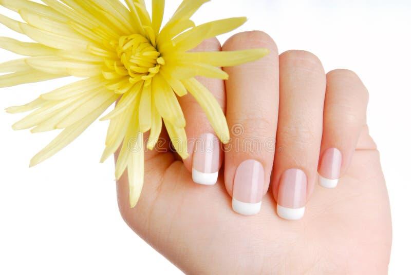 France manicure royalty free stock photo