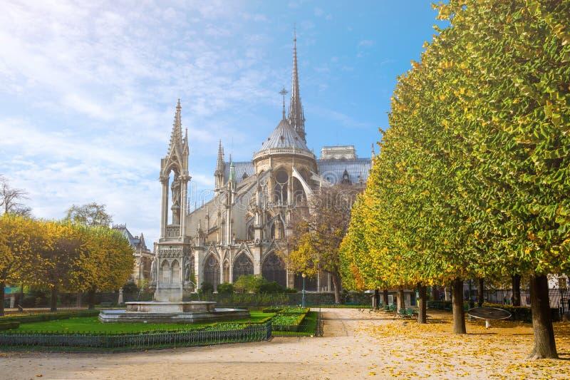 france paris Cathédrale de Notre Dame de Paris en automne ensoleillé photographie stock