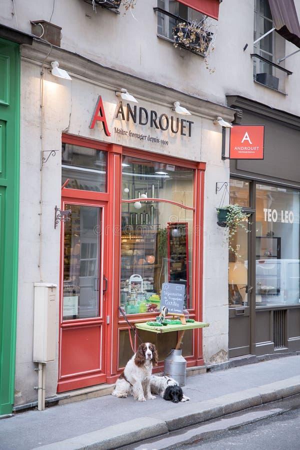 france paris 30 mars, 2018 Två härliga hundkapplöpning som framme väntar på deras ägare av ostmarknaden royaltyfri fotografi