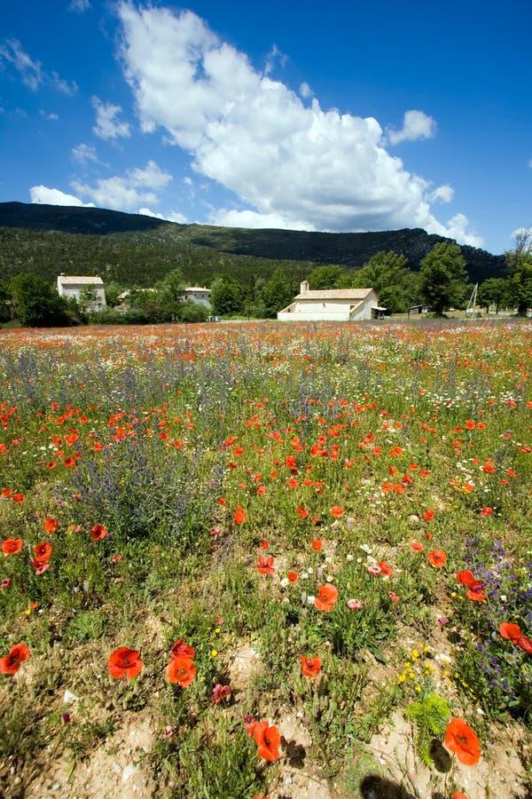 France Provence fotografia de stock royalty free