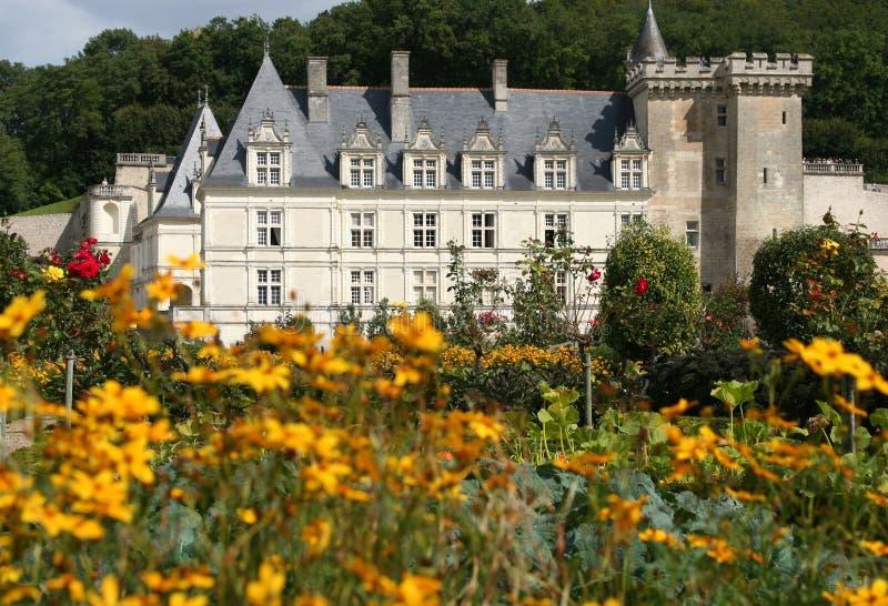 France villandry zamek obraz royalty free