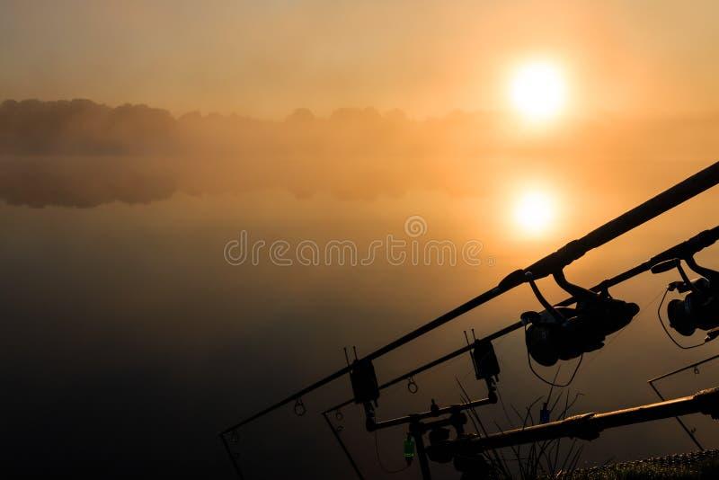 Frances brumeuses de lac de cannes à pêche de carpe photos libres de droits