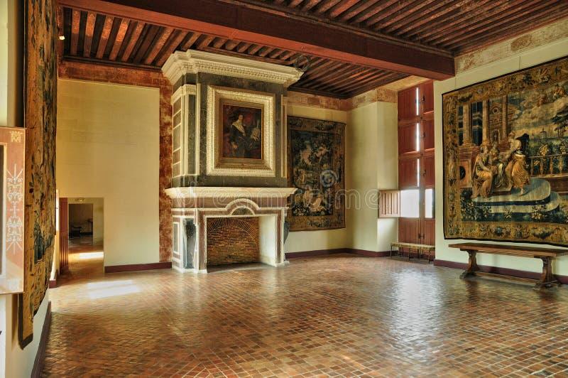 Frances, le château de la Renaissance de Cadillac photo stock