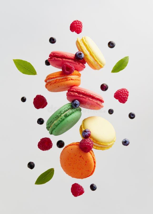 Francese Macarons con le bacche fresche immagine stock libera da diritti