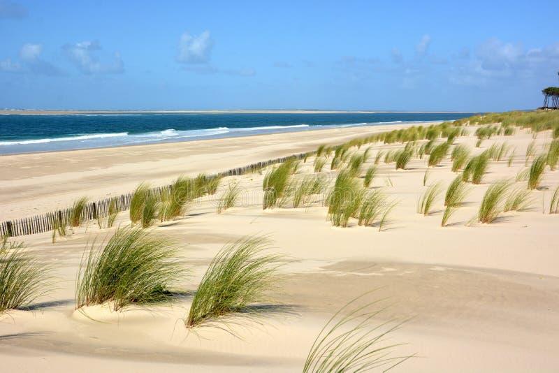 Francia, Aquitania, playa atlántica, dunas fotografía de archivo
