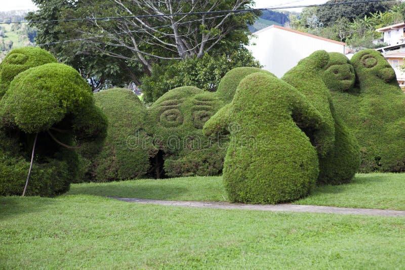 Francisco Alvardo Park em Zarcero, Costa Rica fotos de stock royalty free
