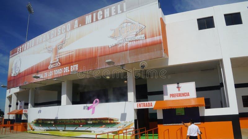 Download Francisco A Estadio De Micheli En El La Romana Imagen editorial - Imagen de jugador, juego: 64205125