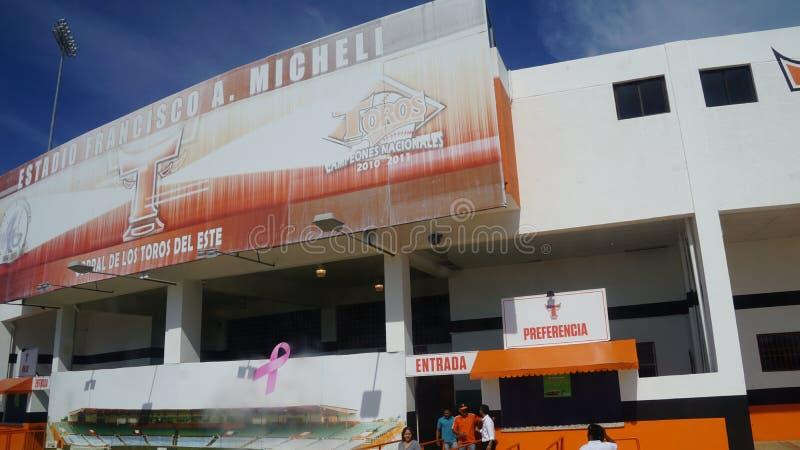 Download Francisco A Estadio De Micheli En El La Romana Imagen editorial - Imagen de profesional, jugador: 64205135