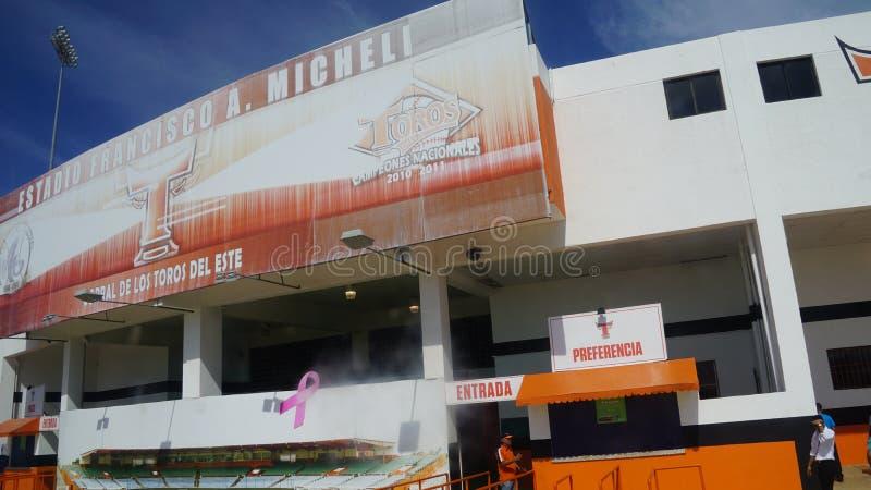 Download Francisco A Estadio De Micheli En El La Romana Imagen editorial - Imagen de tierra, ocio: 64205145