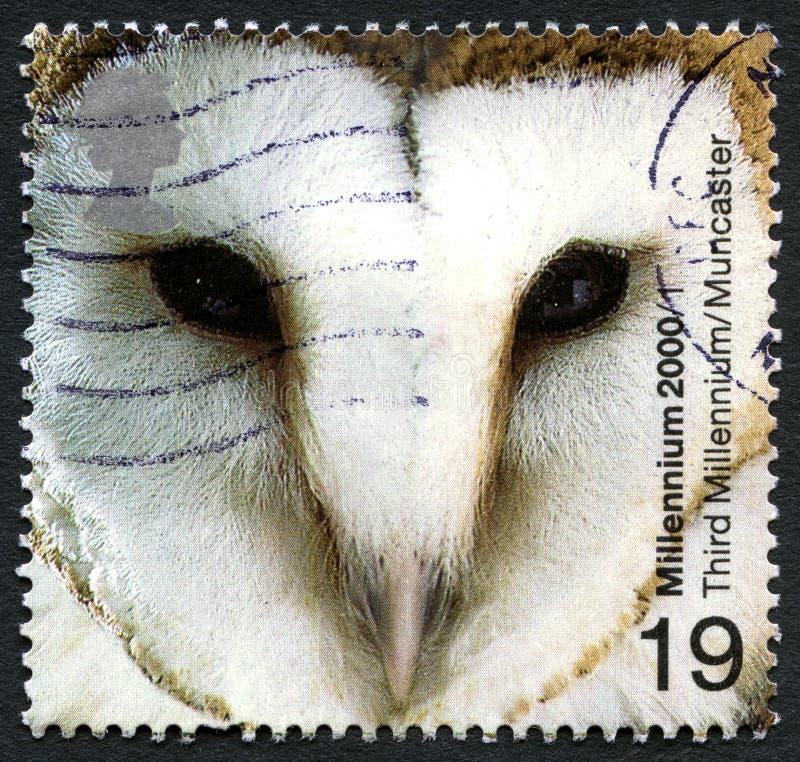 Francobollo BRITANNICO dei barbagianni fotografie stock libere da diritti