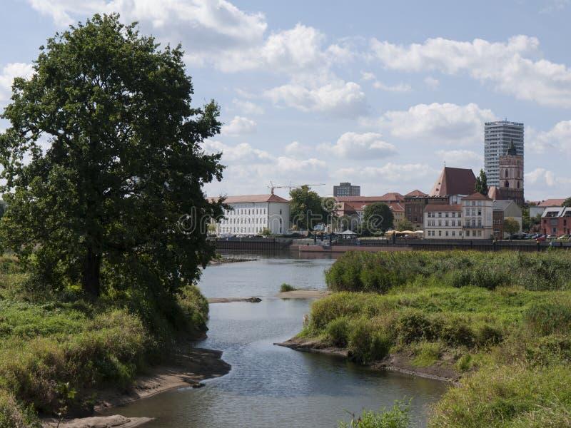 Francoforte-Oder-Nebenarm immagine stock libera da diritti