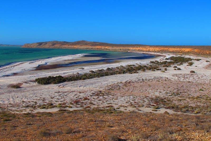 Francois Peron National Park, baía do tubarão, Austrália Ocidental imagem de stock