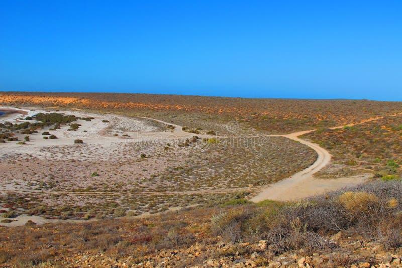 Francois Peron National Park, baía do tubarão, Austrália Ocidental imagem de stock royalty free