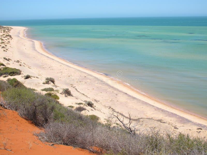 Francois Peron National Park, baía do tubarão, Austrália Ocidental imagens de stock royalty free