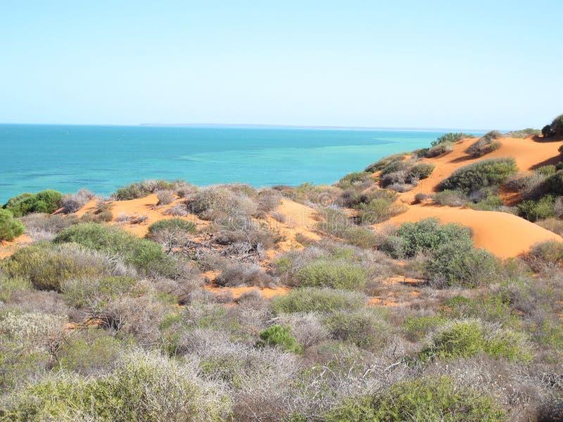 Francois Peron National Park, bahía del tiburón, Australia occidental imagenes de archivo