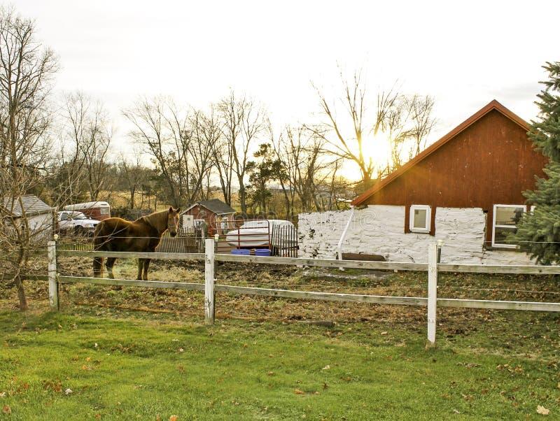 Franconia Pennsylvania häst och ladugård arkivfoto