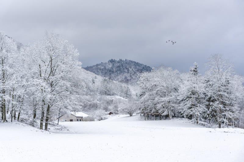 Francuski wioska krajobraz pod śniegiem obraz royalty free