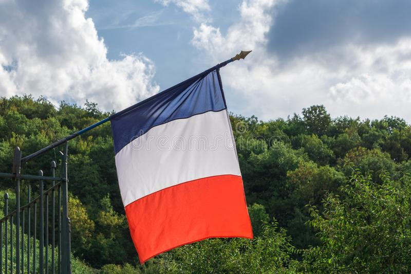Francuza chorągwiany falowanie w wiatrze na zielonym lasowym wzgórzu i niebie z chmury tłem zdjęcie royalty free
