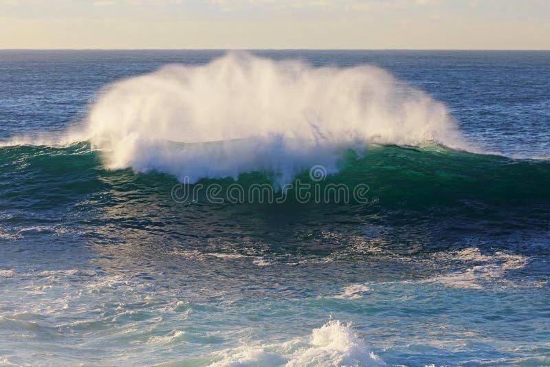 Frangiflutti dell'oceano fotografia stock
