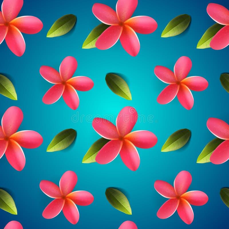 Frangipani kwitnie bezszwowego wzór, Songkran festiwal ilustracja wektor