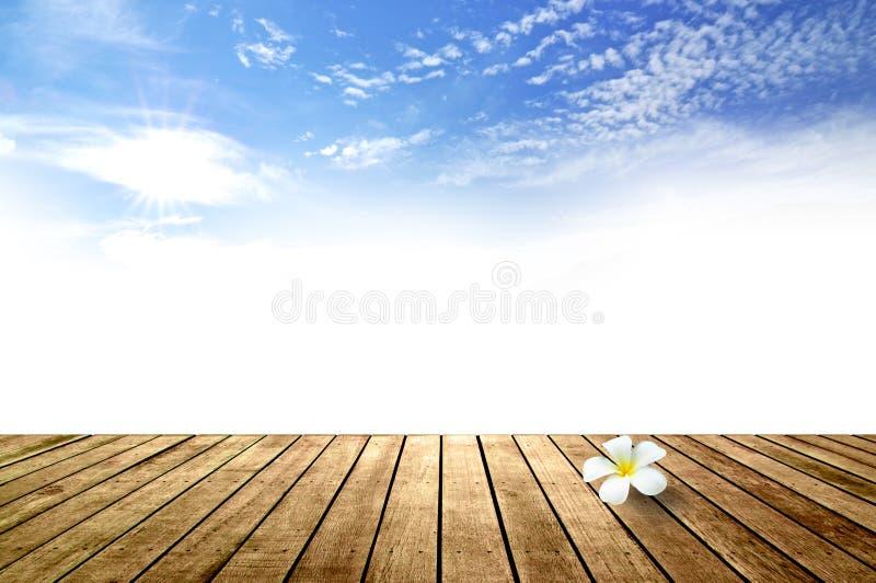 Download Frangipanibloemen Van Plumeria Stock Afbeelding - Afbeelding bestaande uit naughty, gebladerte: 29512737