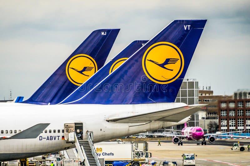 Frankfurt Duitsland 23 02 19 Lufthansa Luchtbus twin-engine straallijnvliegtuig die zich bij de fraportluchthaven bevinden die op stock afbeeldingen