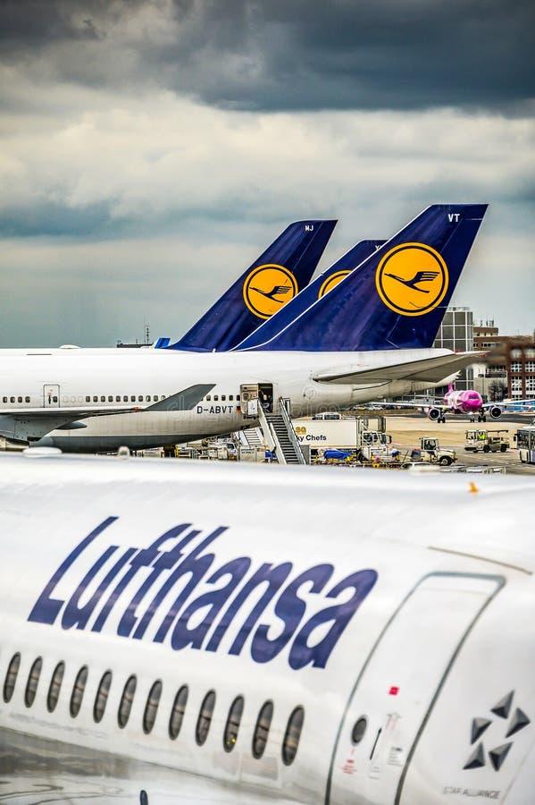 Frankfurt Duitsland 23 02 19 Lufthansa Luchtbus twin-engine straallijnvliegtuig die zich bij de fraportluchthaven bevinden die op royalty-vrije stock afbeeldingen