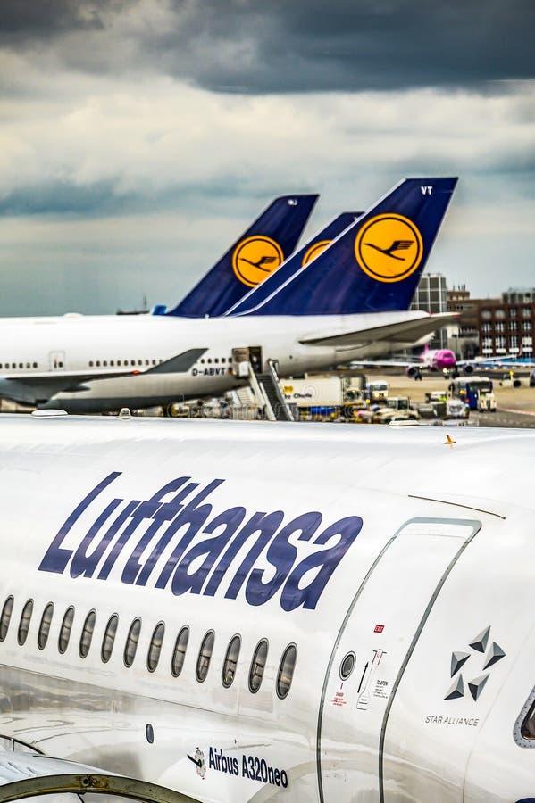 Frankfurt Duitsland 23 02 19 Lufthansa Luchtbus twin-engine straallijnvliegtuig die zich bij de fraportluchthaven bevinden die op royalty-vrije stock fotografie