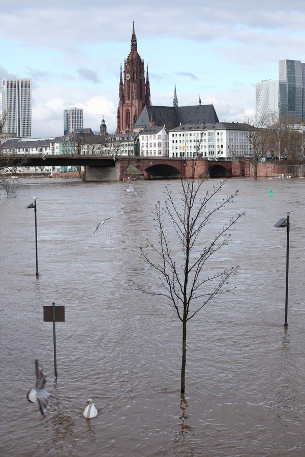 Frankfurt Flood 2011 stock image