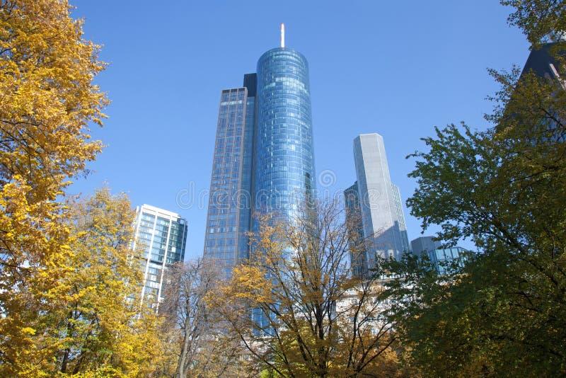 Frankfurt-Skyline-Herbst-Park lizenzfreie stockfotografie