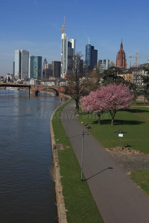 Frankfurt Spring royalty free stock photo