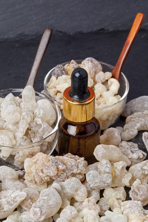 frankincense стоковые изображения
