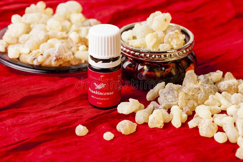 Frankincense Essential Oil royalty free stock photos