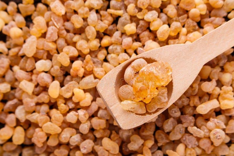 Frankincense istotny olej na drewnianym tle zdjęcia stock