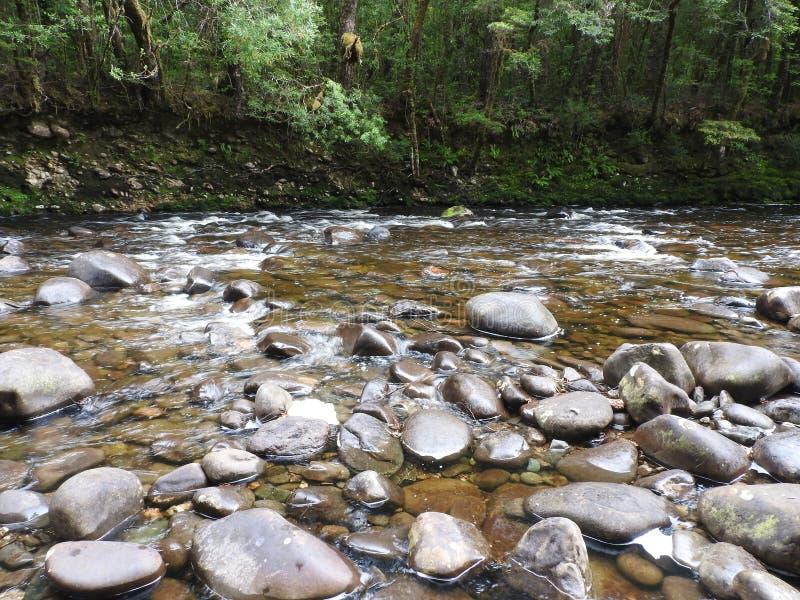 Franklin-Gordon Wild Rivers National Park, Tasmanie photos stock