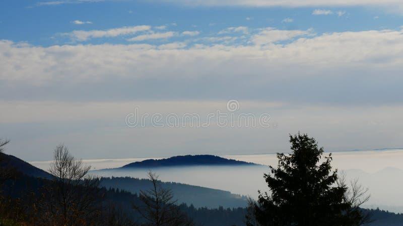 Frankrike höst i Vosgesna med dimma och blå himmel royaltyfri fotografi