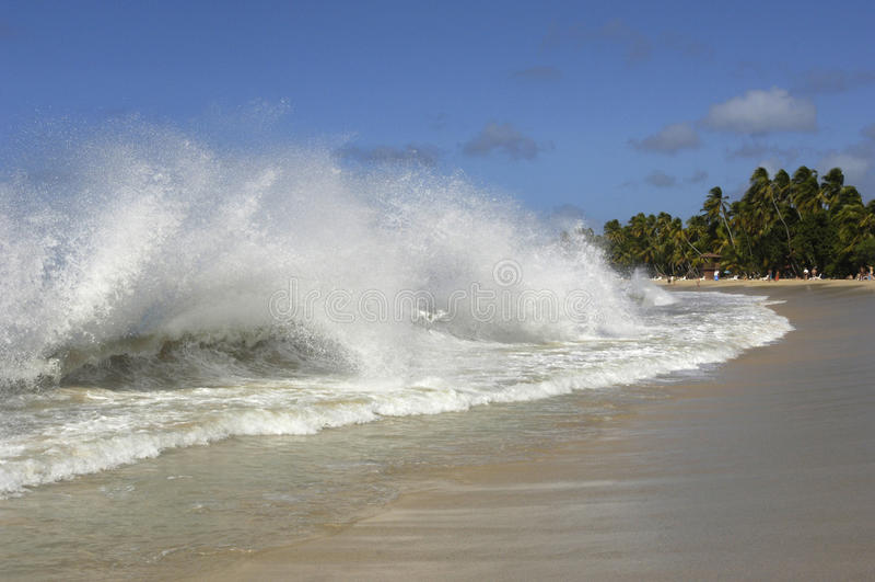 Frankrike Martinique, saltdam sätter på land i Sainte Anne fotografering för bildbyråer