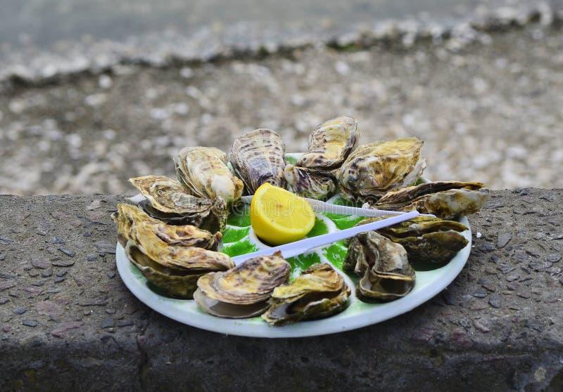 Frankrike mat arkivbild