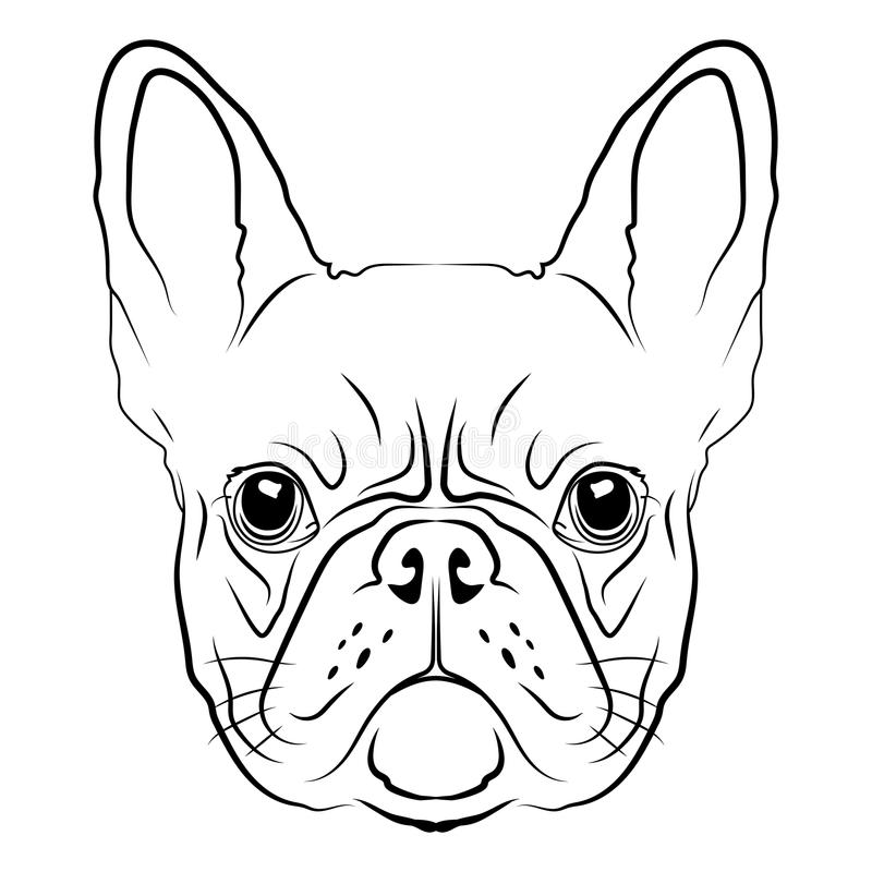 Frans Buldog hoofdembleem of pictogram in wit voor een grafische mascotte en een T-shirt vector illustratie