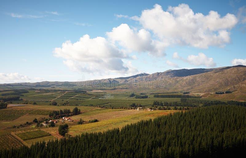 Franschhoek-Landschaft stockfotos