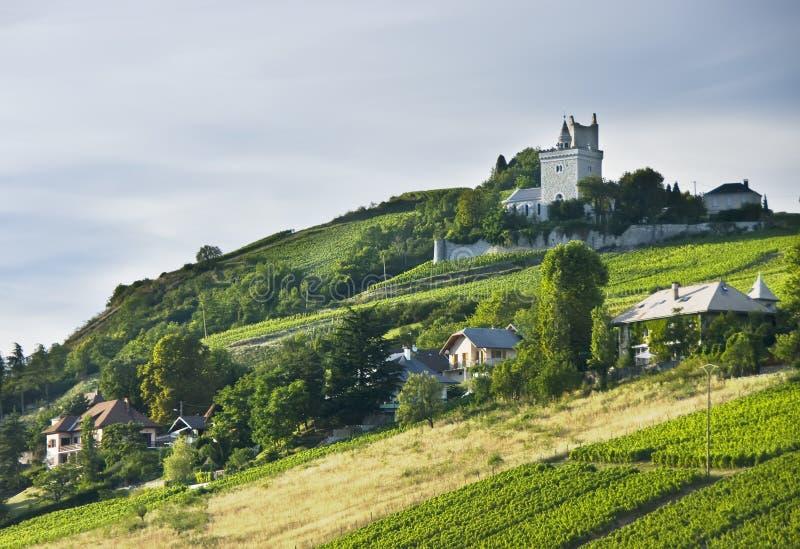 Franse chateau en wijngaarden stock foto