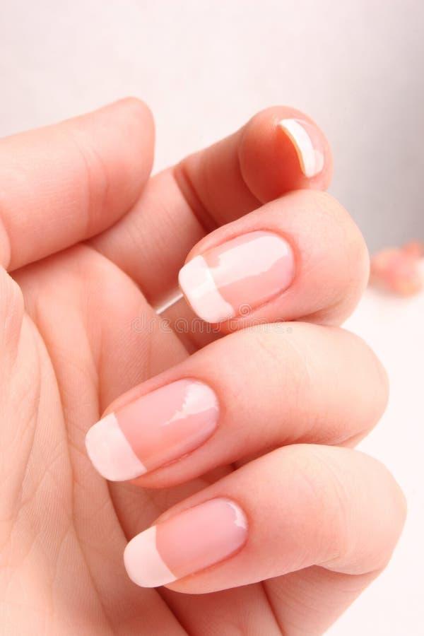 Franse manicure stock foto